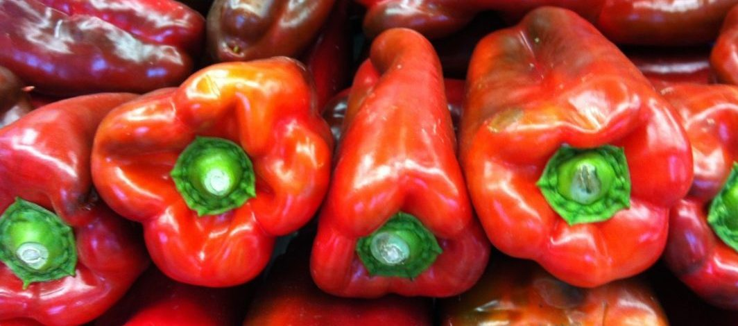 "Za Ravnjance paprika je ""crveno zlato"""