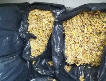 Policija zaplenila tonu i 800 kg duvana FOTO