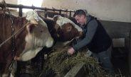 Mladi Ravnjanac odlučan u nameri da ostane na selu i bavi se poljoprivredom