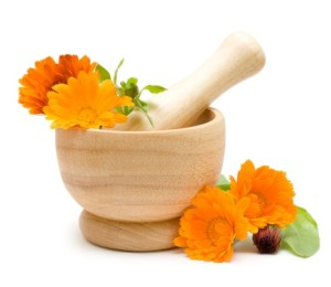 Calendula flowers, mortar and pestle isolated