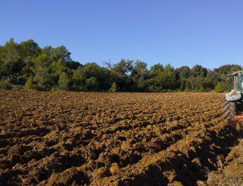 Do podsticaja po hektaru bez podnošenja zahteva